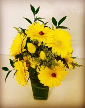 Sunny Days! Yellow Tone Contemporary Floral Designs in Plainview, TX | Kan Del's Floral, Candles & Gifts
