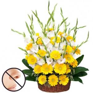 Sunny Delight Sympathy Gift