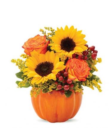 Sunny Fall Pumpkin
