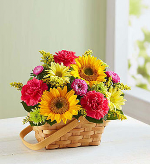 Sunny Garden Basket™  in Valley City, OH | HILL HAVEN FLORIST & GREENHOUSE