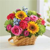 Sunny Garden Basket ITEM #148591