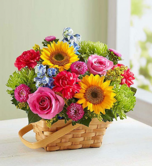 Sunny Garden Basket Summer Flower Basket in Springfield, MO   FLOWERAMA #226