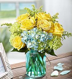 Sunny Garden Cool Blue and Golden Blooms in Gainesville, FL   PRANGE'S FLORIST