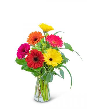 Sunny Gerbera Flower Arrangement in Nevada, IA   Flower Bed