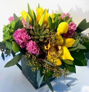 Sunny Paradise  in Falls Church, VA | Geno's Flowers