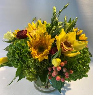Sunny Petals  in Falls Church, VA | Geno's Flowers
