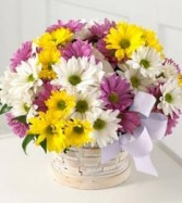 Sunny Skies Bouquet N4-4322