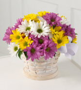 Sunny Skies  Flower arrangement