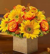 Sunny & Spice Floral Bouquet