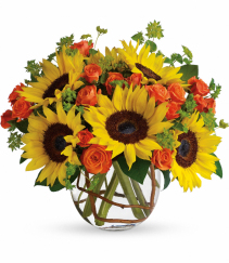 Sunny Sunflower all occasion