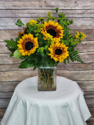 Sunny Sunflowers  in Punta Gorda, FL | CHARLOTTE COUNTY FLOWERS