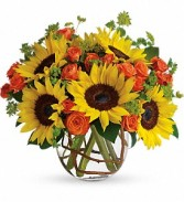 Sunny Sunflowers Best Sellers