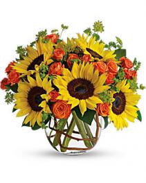 Sunny Sunflowers Compact