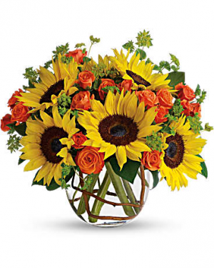 Sunny Sunflowers Compact in Los Angeles, CA | California Floral Company