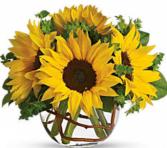 Sunny Sunflowers Round Bubble Bowl