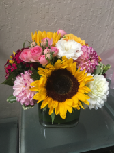 Sunny Sunflowers Seasonal Mix