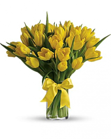 Sunny Yellow Tulips in a Vase