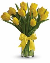 Sunny Yellow Tulips T140-1 12.5