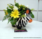 SUNNY ZEBRA New Baby Flowers