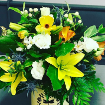 sunrise arrangment Everyday Arrangement