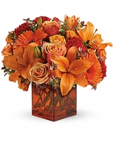 Sunrise Sunset Arrangement