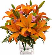 Sunset Lilies Floral Arrangment