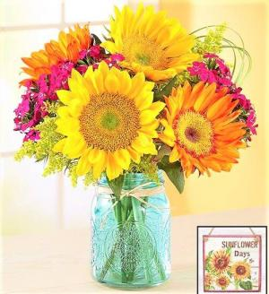 Sunset on the Veranda Sunflowers and more in Cool Blue Jar in Gainesville, FL | PRANGE'S FLORIST