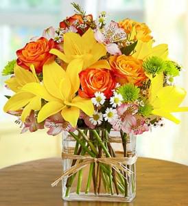 Sunshine & Cheer Floral Arrangement in Monument, CO | Enchanted Florist