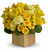 Sunshine Chic - 539 Arrangement
