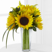 Sunshine Daydream Bouquet Bouquet