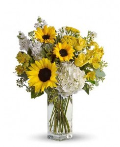 Sunshine in a vase Cut Flowers