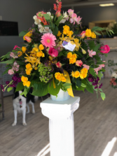 Sunshine Memory Funeral arrangement