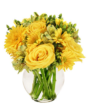 Sunshine Perfection Floral Arrangement in Sterling Heights, MI | FLOWERS AT DAISIE'S WEDDING DESIGNS
