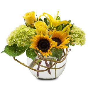 Sunshine Rays Arrangement in Spring, TX | TOWNE FLOWERS