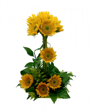 Sunshine Sunflower Arrangement
