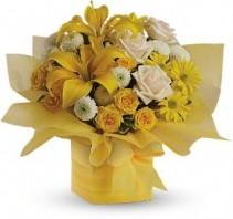 Sunshine Surprise Flowers Flower Arrangement