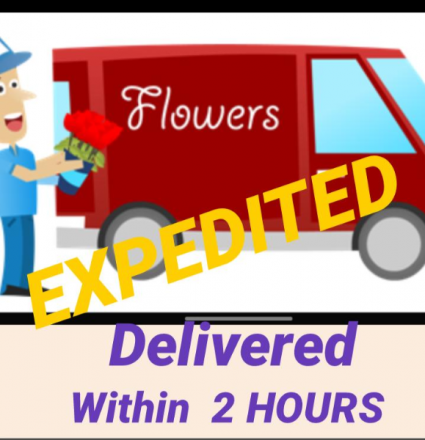 EXPRESS  DELIVERY- $25