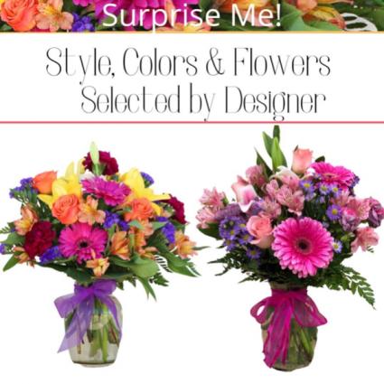 Surprise-Designer's Choice