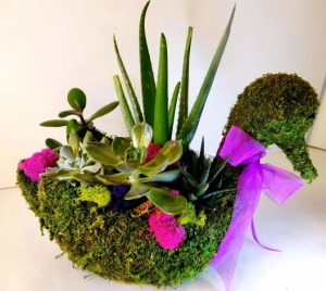 Swan Succulent Planter  in Troy, MI | ACCENT FLORIST