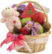 SWEET ARRIVAL GIRL GIFT BASKET