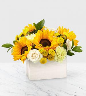 Sweet as Lemonade Bouquet   in Fort Collins, CO | D'ee Angelic Rose Florist
