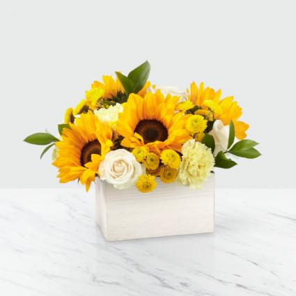 Sweet as Lemonade Sunflower Bouquet