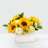 Sweet as Lemonade Sunflower Bouquet MD