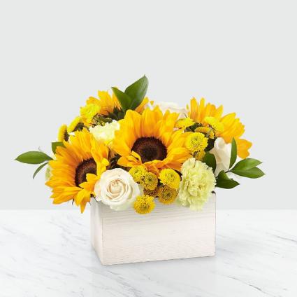 Sweet as Lemonade Sunflower Bouquet MD