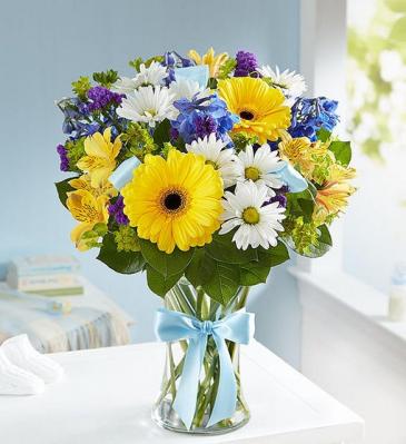 Sweet Baby Boy™ Arrangement 159223 Vase Arrangement