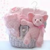 Sweet Baby girl Gift Basket Gift Basket