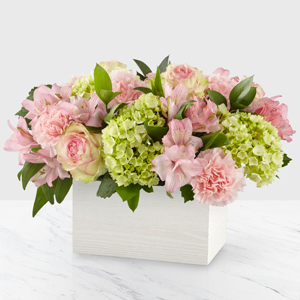 SWEET CHARM   in Clarksville, TN | FLOWERS BY TARA AND JEWELRY WORLD