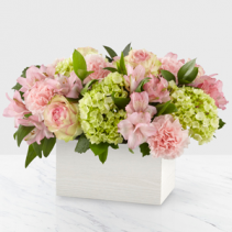 Sweet Charm Floral Design