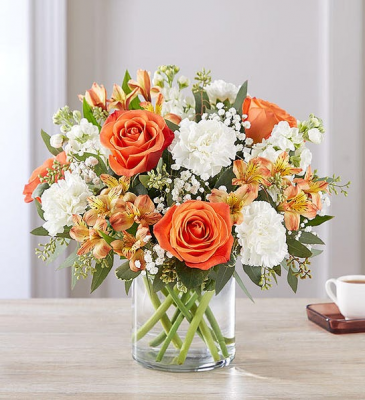 sweet Citrus Bouquet  174301