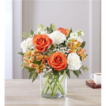 Sweet Citrus Bouquet Flower Arrangement